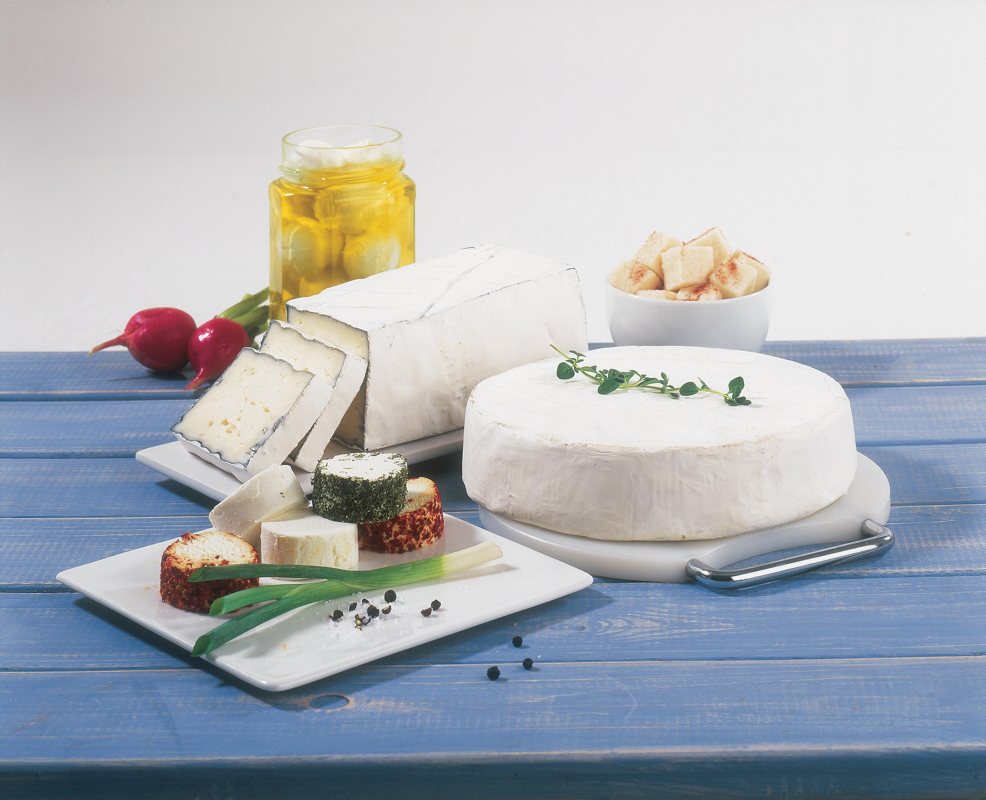 Israel Dairy Delicacies Profile